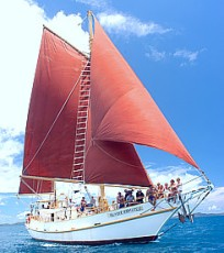 Alexander Stewart - Classic Tall ship Sailing Whitsundays