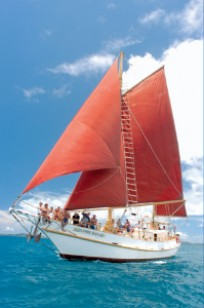 Beaches Backpackers Adventure Packages - Eco Tallship Adventure