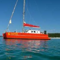 Tongarra Catamaran Cruises Whitsundays