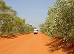 Australian Pinnacle Tours 9 Day Broome Bungle Bungles Cape Leveque